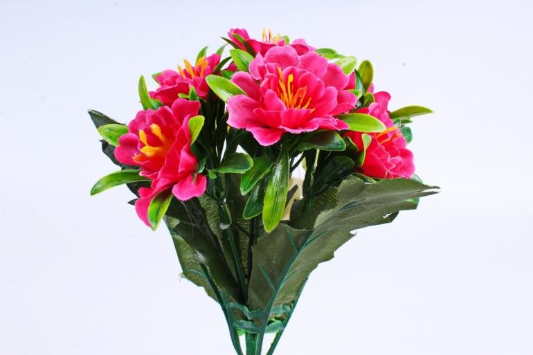Азалия  ярко-розовая