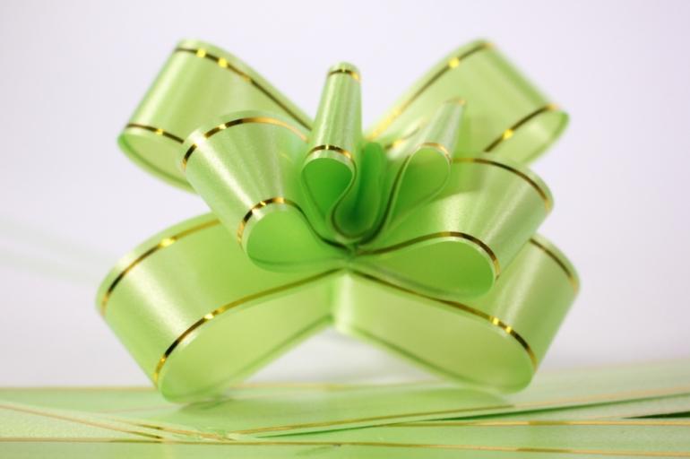 бант-бабочка 22*470мм золот. полоса салатовый (10 шт.)
