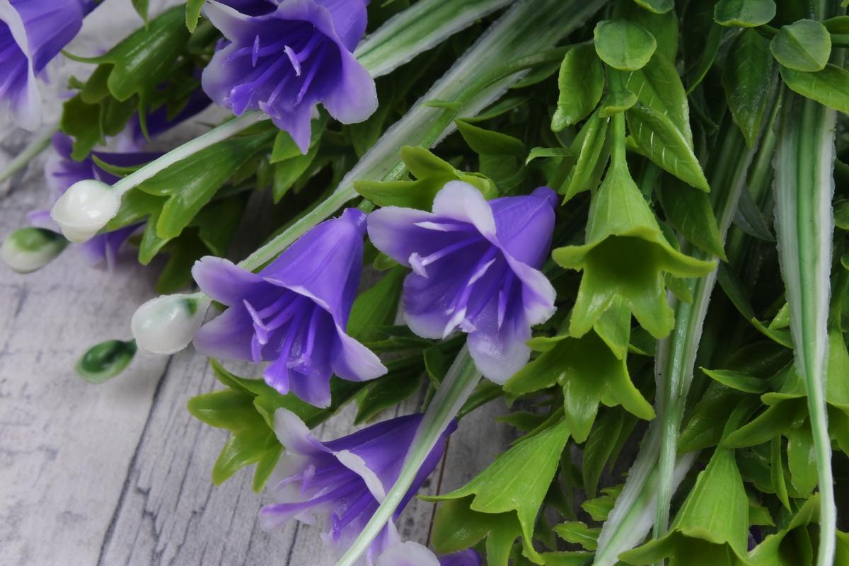 Цветы, цветы колокольчики в спб