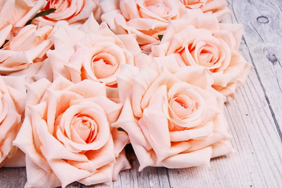 совхоза скрестили розы персиковый цвет фото главное