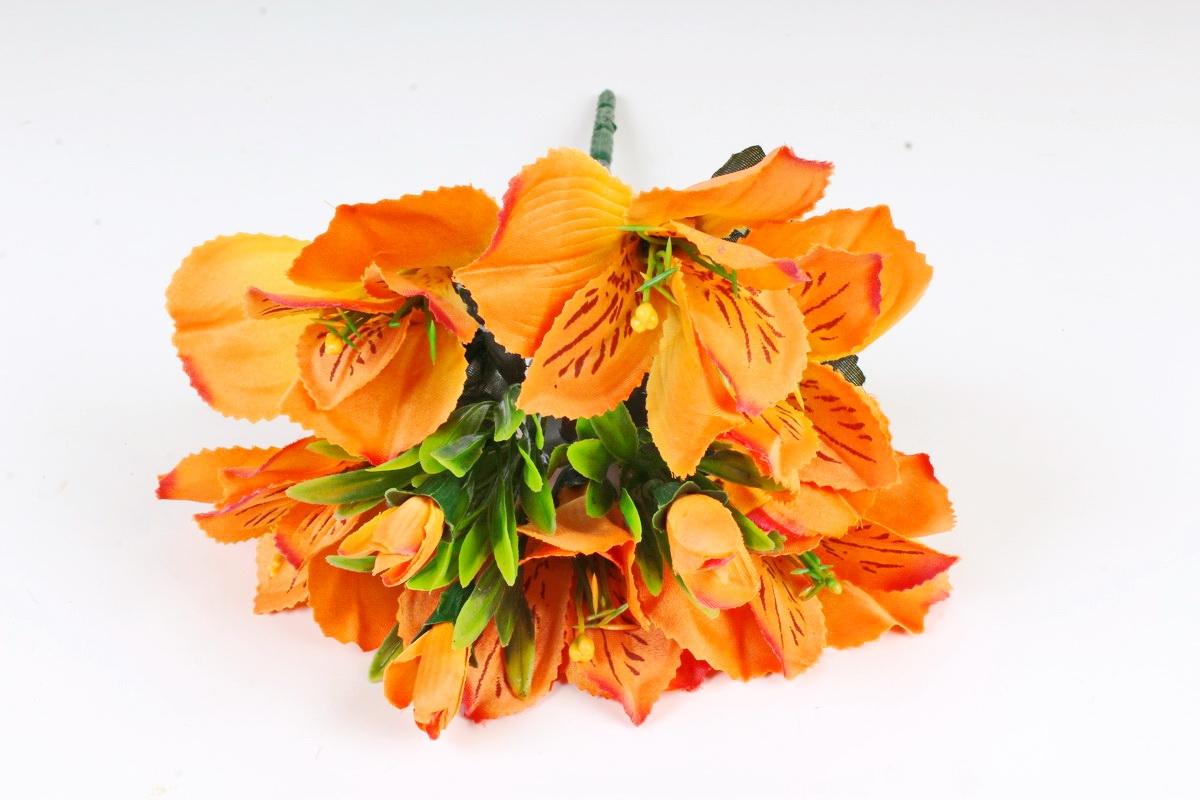 альстромерии оранжевые фото сортов в парке многоступенчатая