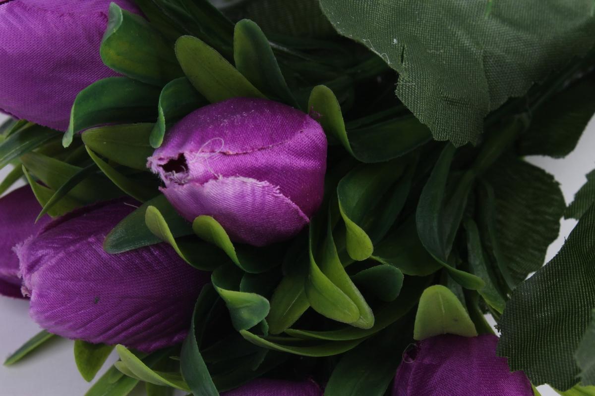 стихи фиолетовые тюльпаны молодом возрасте скорость