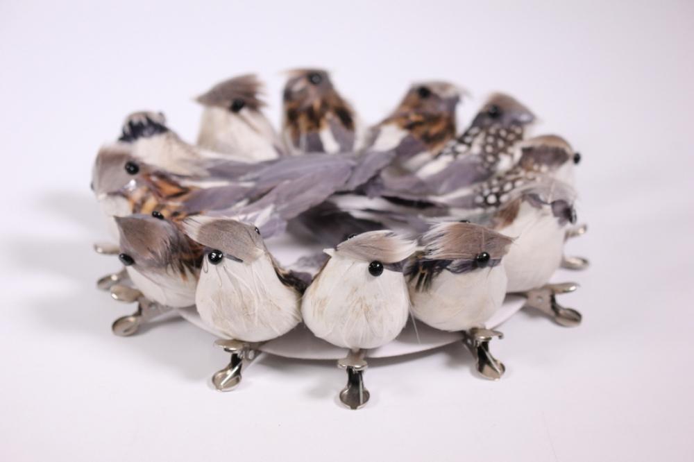 Купить Птицу В Магазине