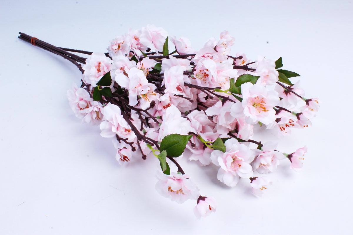 Для букета, цветы сакура живой купить