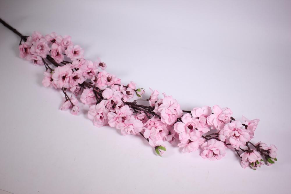 Где можно купить цветы сакуры, магазин пластиковые горшки
