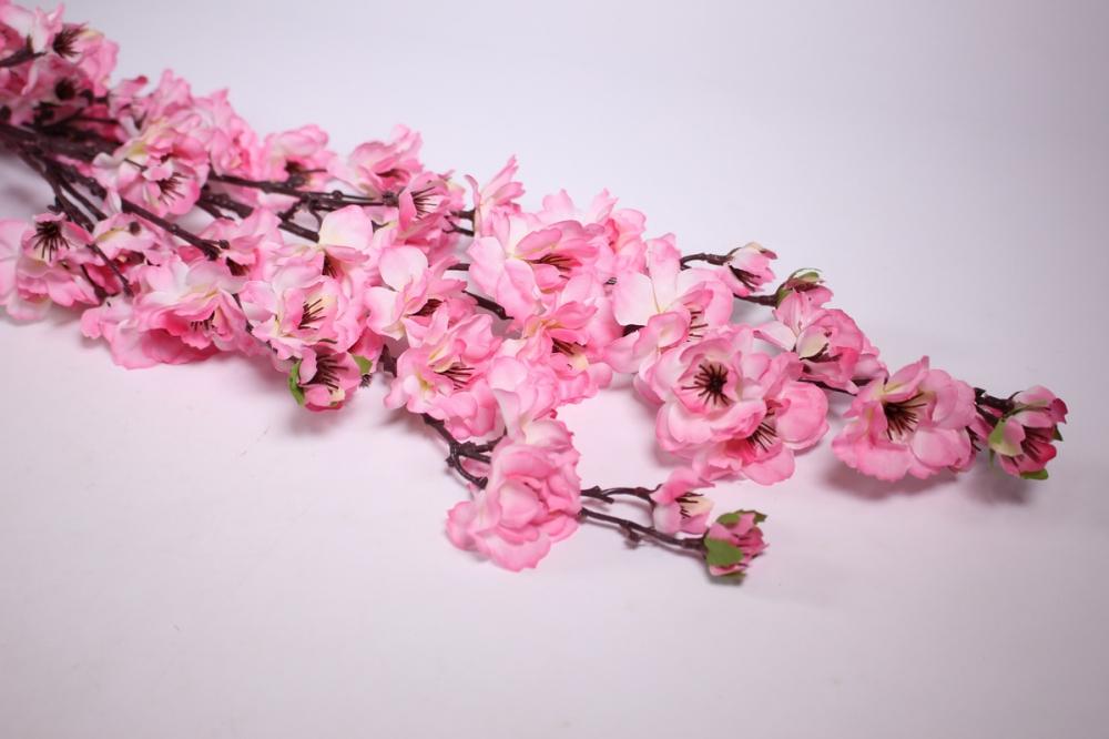Фрезии ранункулюсы, где можно купить цветы сакуры