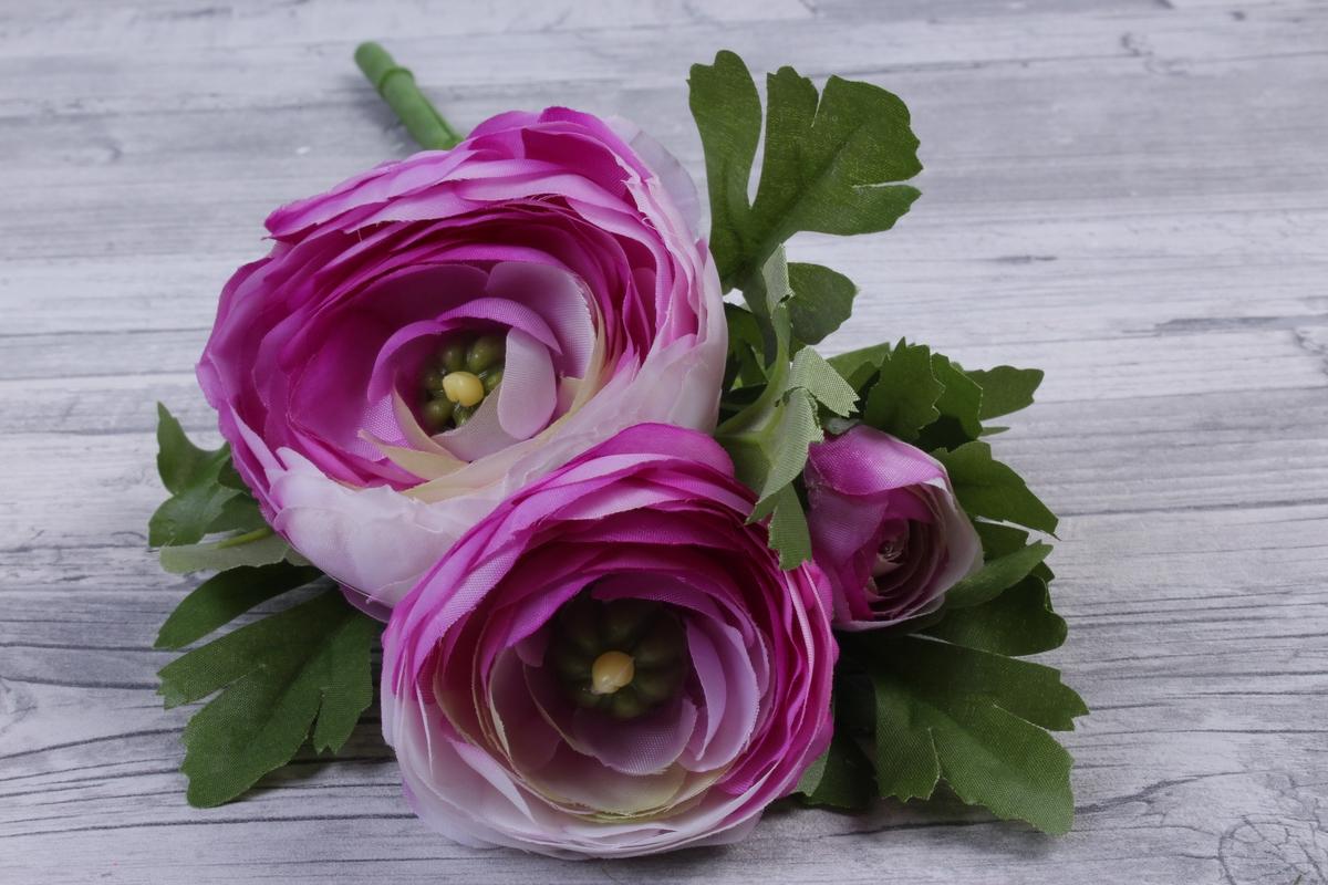 картинки цветы ранункулюсы