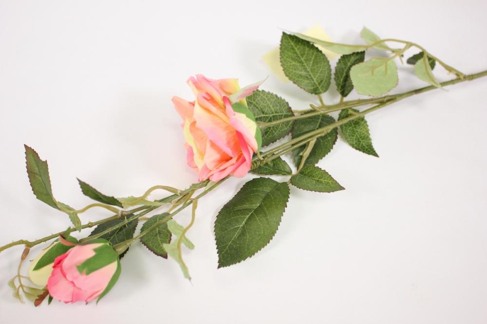 нежные воздушные веточки роз картинки том, как