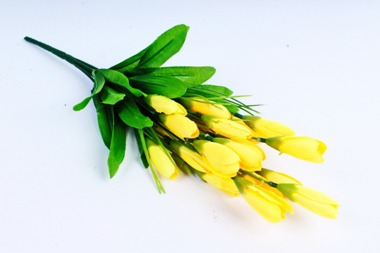 Галянтусы жёлтые