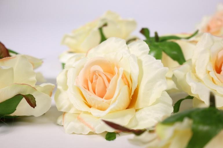 головка розы шампань-персик ( в уп. 12 шт) d=9см sun507