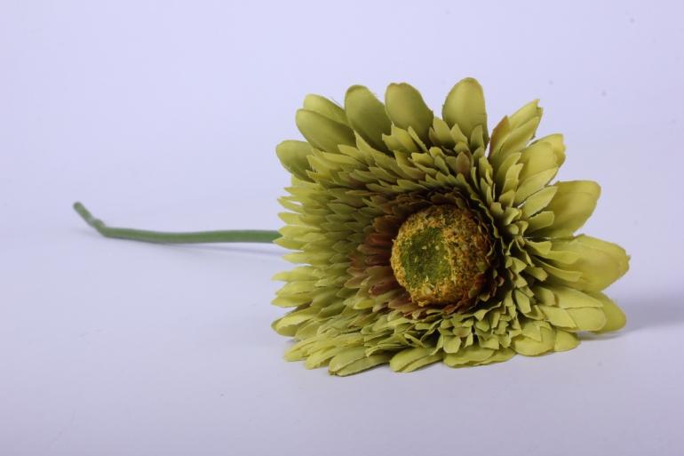 искусственное растение - цветок герберы 60 см оливковый   sun348