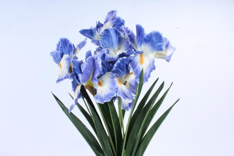 Искусственное растение -  Ирис Лорион бело-синий  Б9144