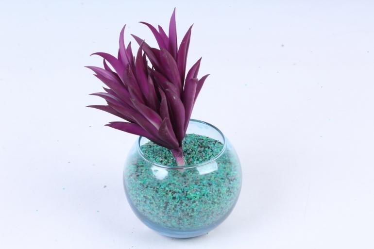 Искусственное растение -  Суккулент Гастерия фиолетовый  Э10318