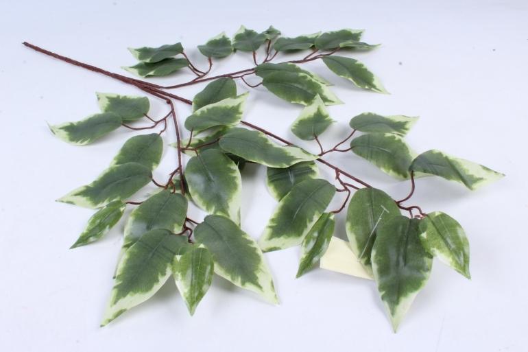 Искусственное растение -  Ветка Фикус белый  В9155
