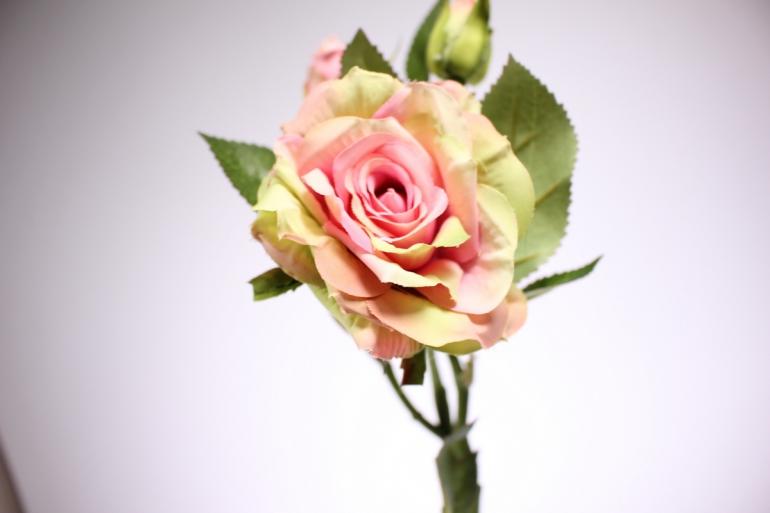 искусственное растение - ветка розы 45см розово-салатовая sun425