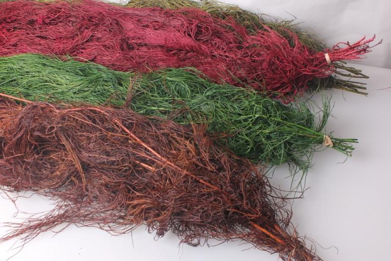 сухоцветы ликоподий сухие ветки (10шт) 1м  цвета в ассортименте 7836