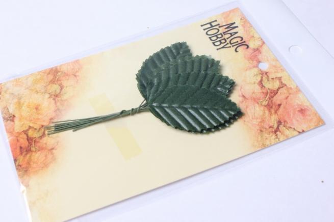 листья декоративные зеленые