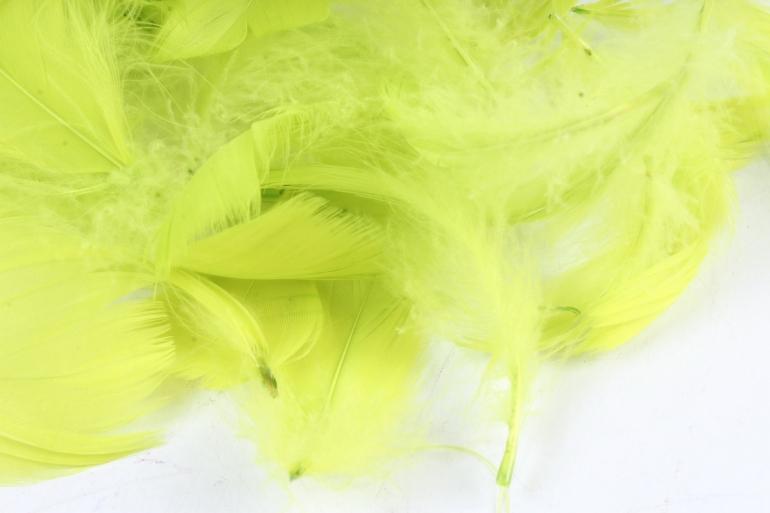 Перья лимонные в пакете 10гр 1610