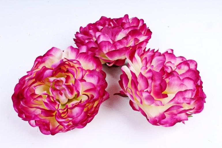 Пион  цвет пурпурный 2005 (3 шт в уп) SUN406