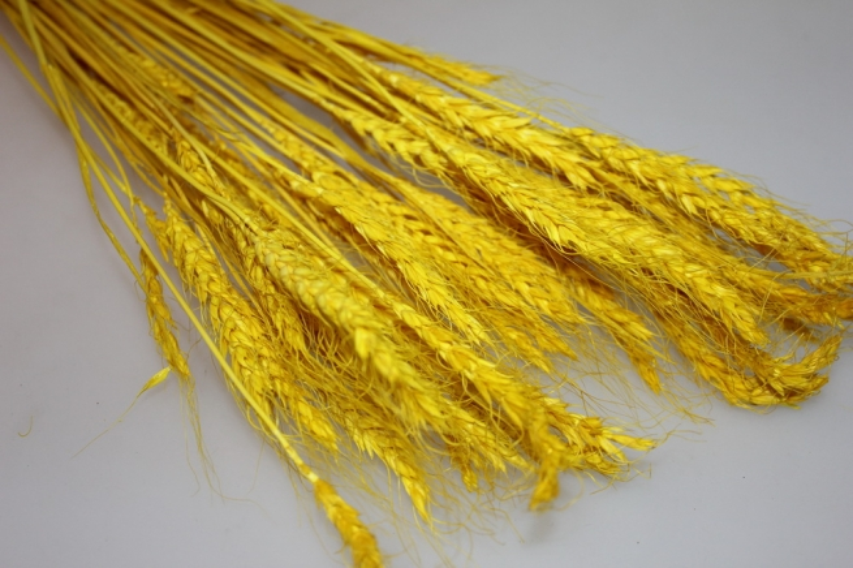 сухоцветы пшеница 75гр сухоцветы пшеница 75гр - жёлтый 7316