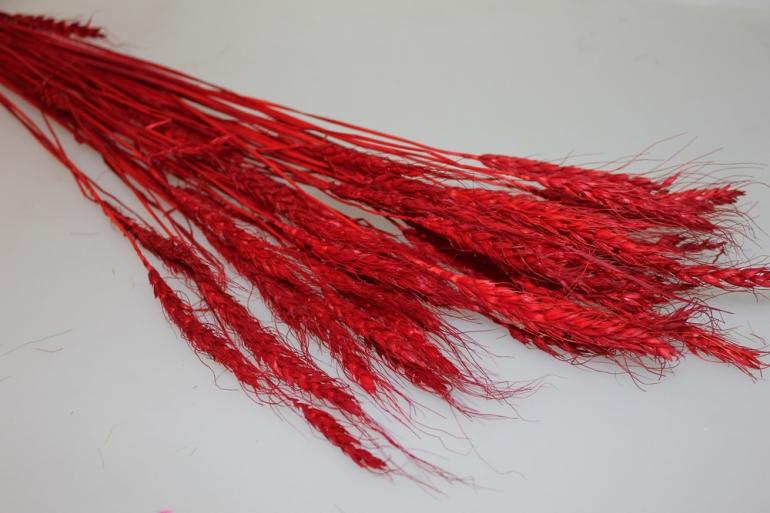 сухоцветы пшеница 75гр сухоцветы пшеница 75гр - красный 7316