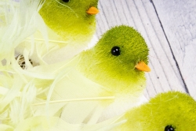 0953 Птичка С кудрявым хвостом на прищепке 7 см (6шт в уп) 2810175
