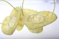 корзины из сизаля 090513 корзины плетеные сердце сизаль набор (2шт) 20х20см - шампань 2474