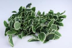 Искусственное растение - Гирлянда из листьев фикуса