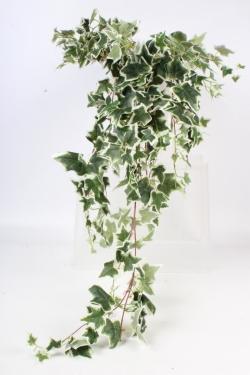 Искусственное растение - Плющ свисающий зелено-белый 1м