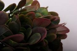 Веточки травы зелено/бордовые 20см (6 шт в уп) GA7B0108  1803