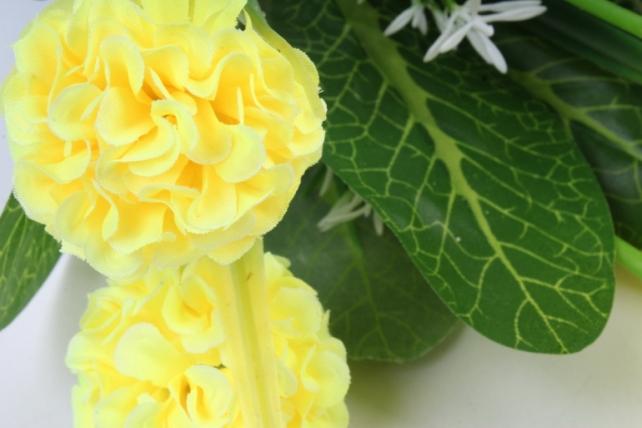 Гортензия жёлтая