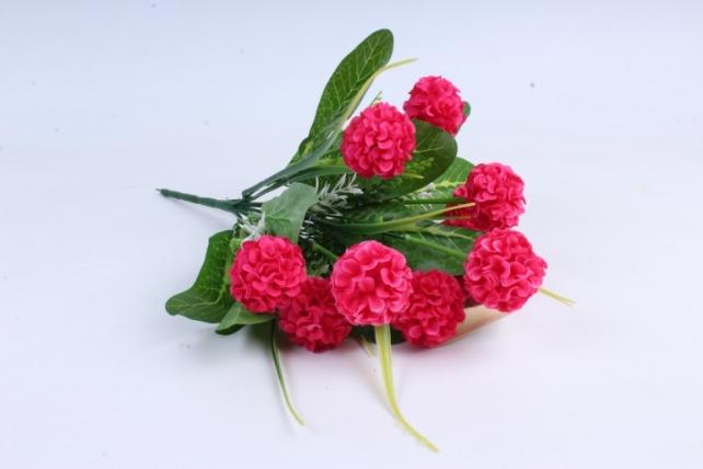 Гортензия ярко-розовая