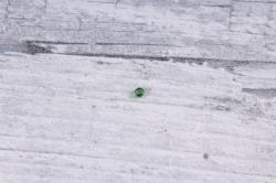 бисер декоративный  травяной №27 (450гр)