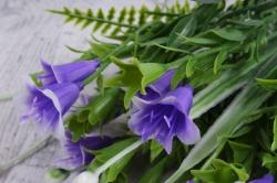 Искусственное растение - Колокольчик с декором сиреневый
