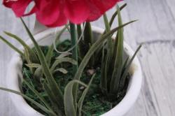 Цветочная композиция (И) - Хризантема красная в кашпо   HR-38327  7013
