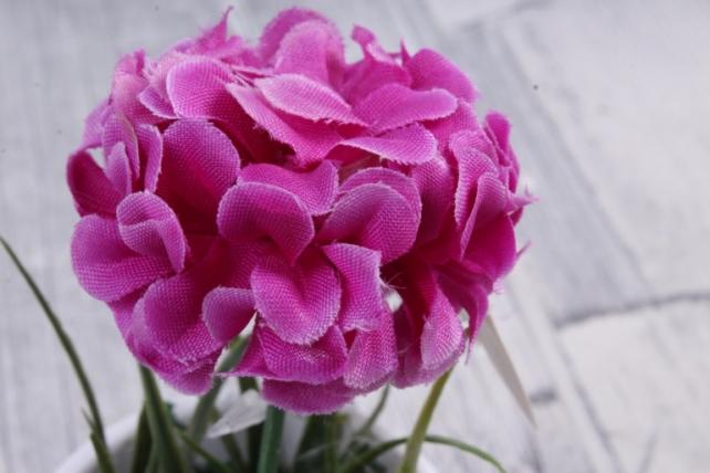 Цветочная композиция (И) - Хризантема фуксия в кашпо   HR-38326  6016