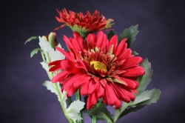 Искусственное растение - Хризантема Красная 35 см SUN530