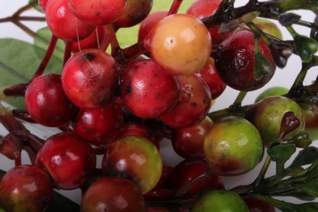 Искусственное растение - Ветка с ягодами красно-салатовыми 30 см OW1006