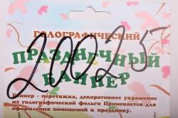 Баннер С Днем Свадьбы, голография, 249см  МНВ004