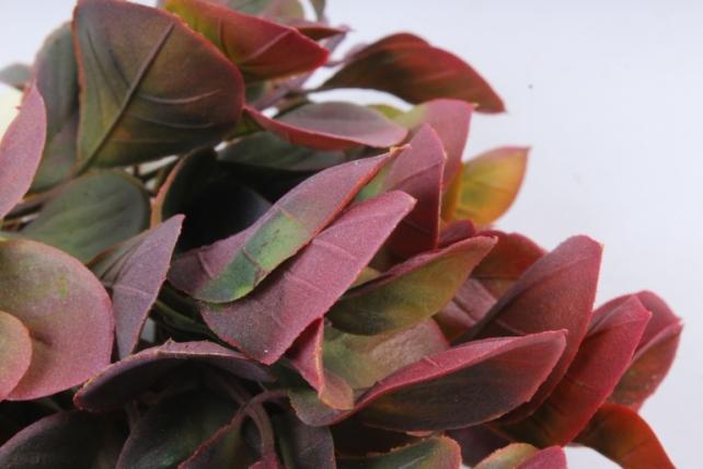 Искусственное растение -  Эвкалипт комнатный с корнями бордо Б10154