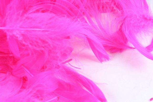 Перья ярко-розовые в пакете 10гр 1511