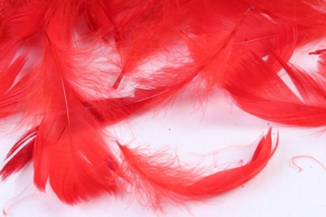Перья красные в пакете 10гр 1559