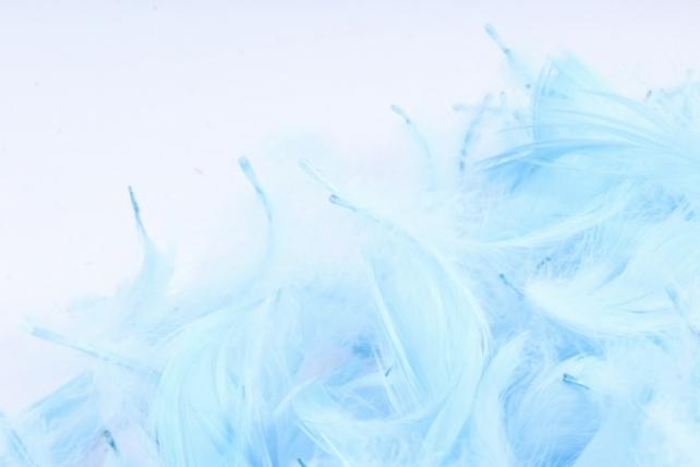 Перья голубые в пакете 10гр 1665