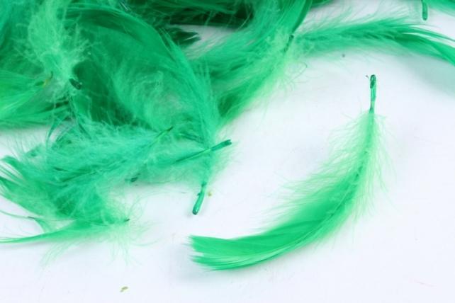 Перья зеленые в пакете 10гр 1764