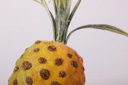 ананас на вставке, 7x50см, оранжевыйrf1504