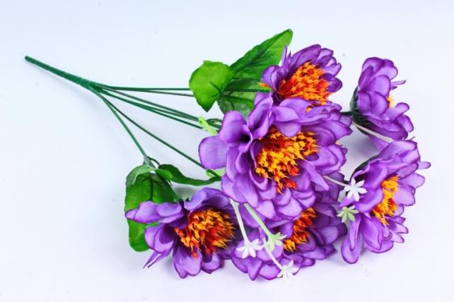 Анемоны  фиолетовые