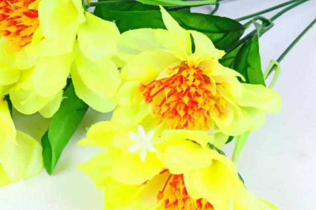 Анемоны  лимонные