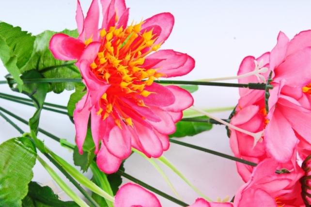 Анемоны  розовые