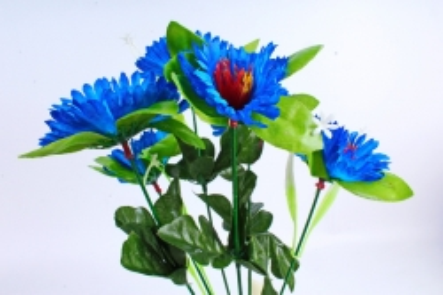 Анемоны  синие