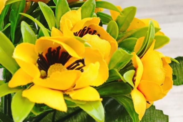 Анемоны букет жёлтые